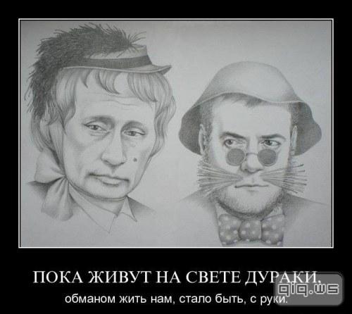 http://www.pictureshack.ru/images/13216_lisy.jpg