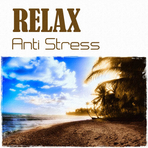 va relax anti stress vol 1 2 2012 relax meditation nature sound mp3. Black Bedroom Furniture Sets. Home Design Ideas