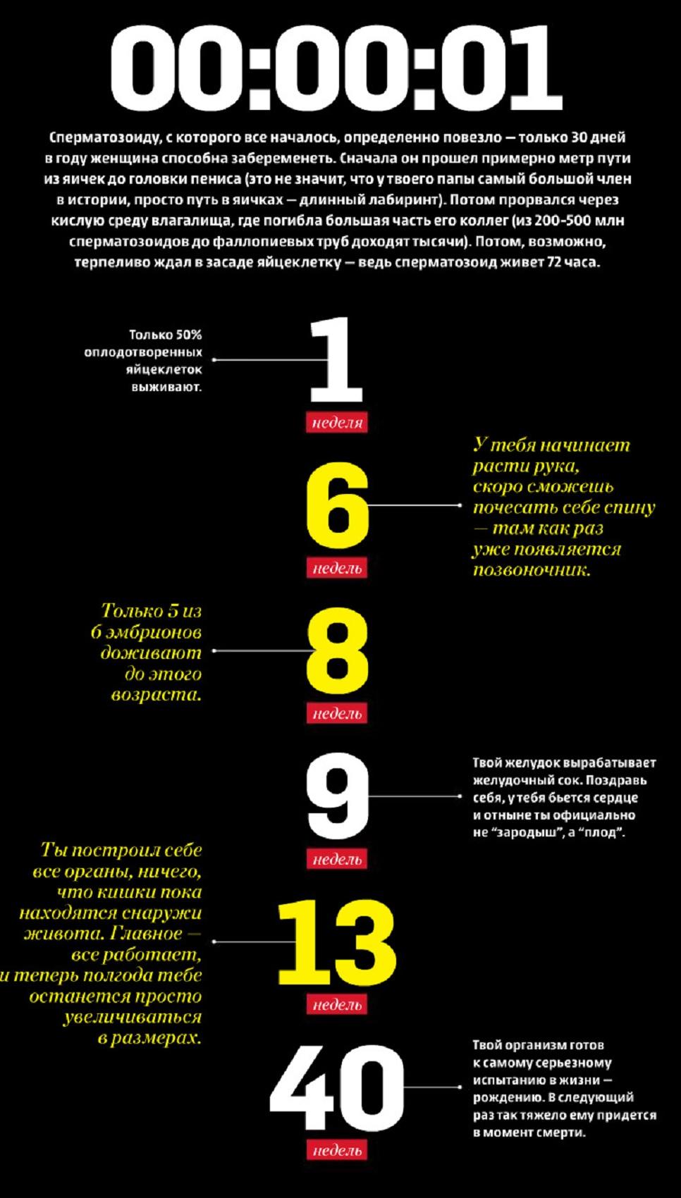 10 интересных фактов о теле 17261_1
