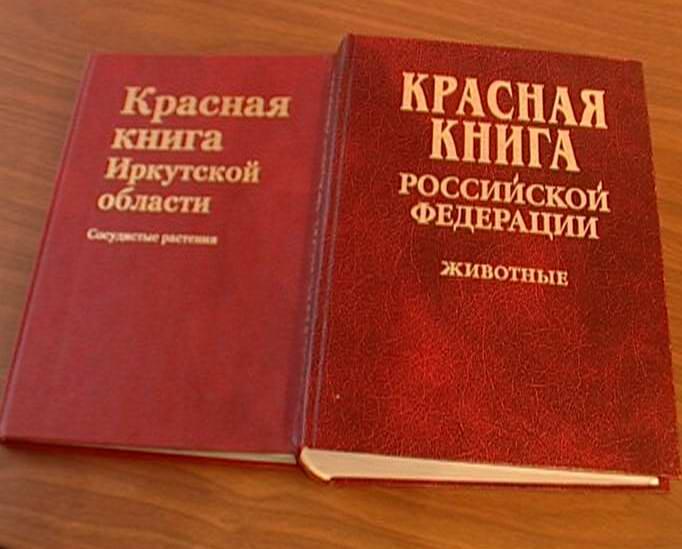 Цветоводство ставропольского края