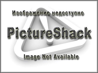 49187_05Forrestal_portray.jpg