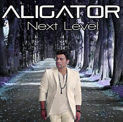 dj alligator скачать mp3 бесплатно: