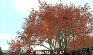 20747_BSOR_TBSA_EOTS_002.jpg