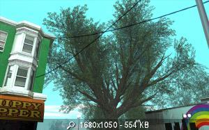 42666_gallery36.jpg