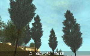 62780_gallery75.jpg