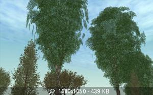 66711_gallery16.jpg