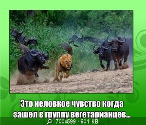 [Изображение: 68895_4566.png]